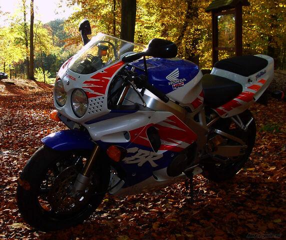 File:2011-11-04-bikepics-2297198-full.jpg