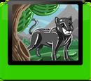 Pet Panther Module