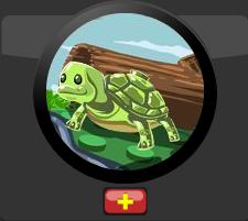 Pet Turtle Module