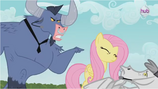 Fluttershy Being assertive S2E19