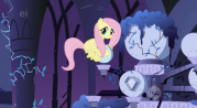 179px-Fluttershy carrying stone episode 2