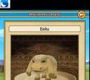 Baku Family