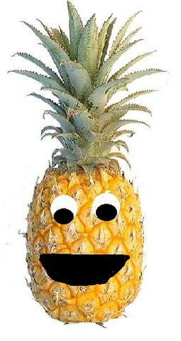 File:Perry the Pineapple.jpg
