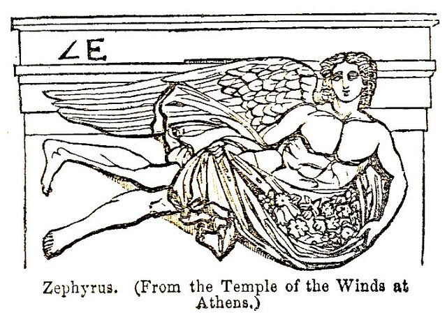 File:Zephyrus drawing.jpg