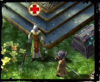 Npc healer