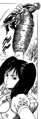 File:Diane catching Gilthunder.png