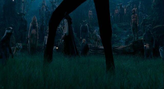 File:Centaur legs.jpg