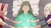 Ino and sakura mystical palm