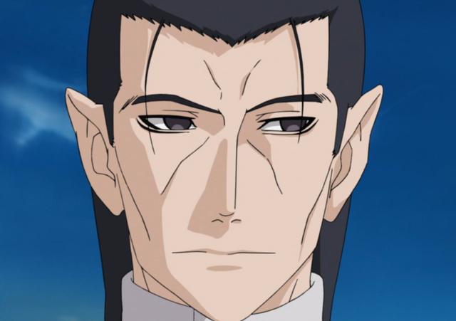 File:Fugi's Face.png