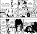 Sakura's reunion with sasuke - kage summit