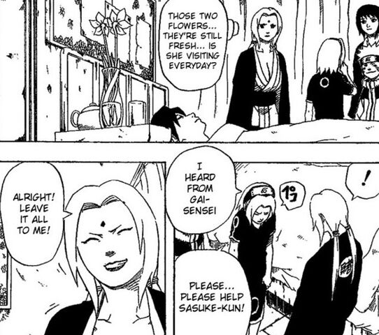 File:Even Tsunade supports it.jpg