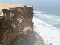 Windthorn Shores