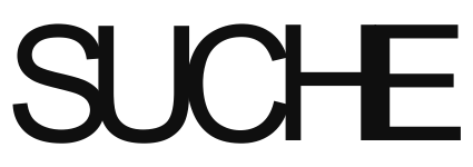 Suche2013