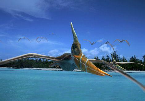 File:NG-Pteranodon.jpg
