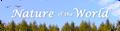 Thumbnail for version as of 16:30, November 1, 2013