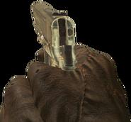 M1911 1st Person BO