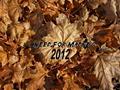 Thumbnail for version as of 17:56, September 27, 2012