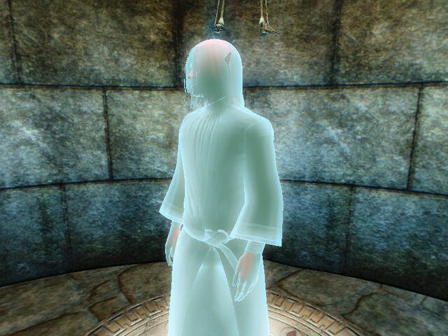File:Narathzul Arantheal holographic.jpg