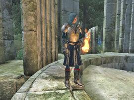 Battlemage of Etronar01