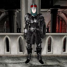 Shadow Armor Female