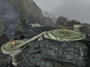 Beacon Site01