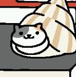 File:Pasty White Shell.jpeg