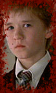Banner-Horror1-Cole