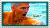Stamp-Gary11