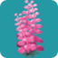 ORN Pink Sea Blossom