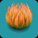 File:ORN Saffron Java Moss.png