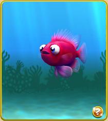Epic Popeye Fish