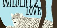 Wildlife Love 2