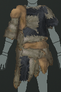 File:Tunic on.png