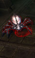 Tomb Spider.jpg
