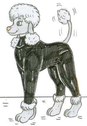 File:Poodle Agent Mirage.png