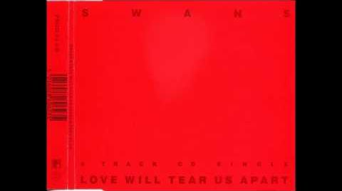 Love Will Tear Us Apart (Acoustic) by Swans