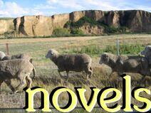 Novelsimage