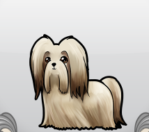 File:Lhasaapso.png