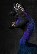 File:Oviraptor logo.jpg