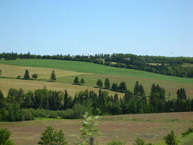 Ralston Countryside