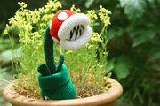 Where's Mario?