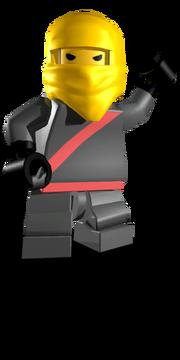 Ninja vendor