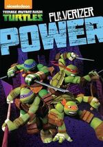 Teenage Mutant Ninja Turtles Pulverizer Power DVD