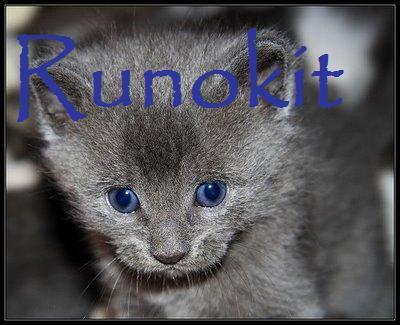 File:Runokit.jpg