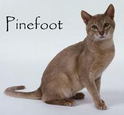 Pinefoot