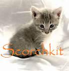 Sckit