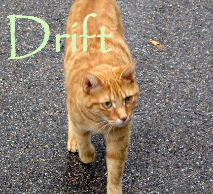 File:Drift.jpg