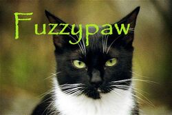 Fuzzypaw