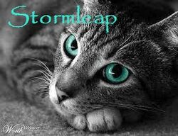 Stormleap