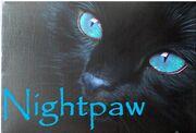 Nightpaw